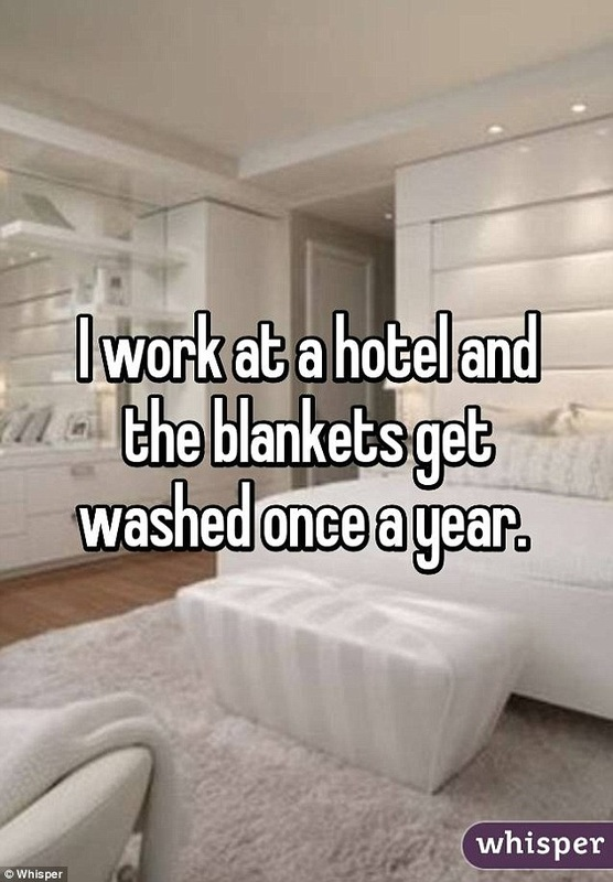Surprise Confessions of Hotel Employees- Never Change the Sheets